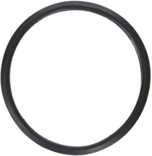 Thermostat Seal- Genuine Toyota